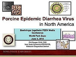 Porcine Epidemic Diarrhea Virus In North America
