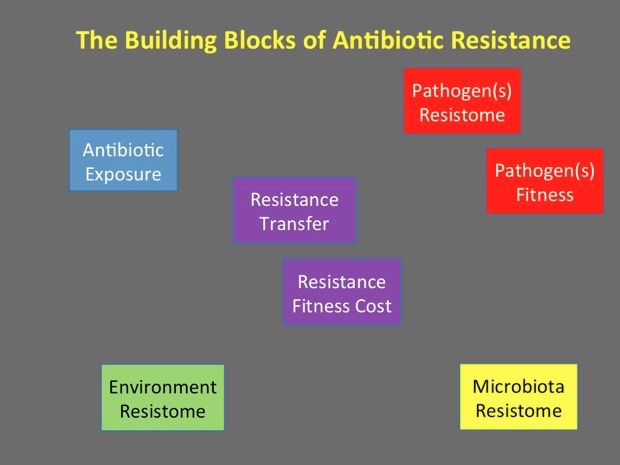 Antibiotics in the Future Tense: How the Last 5 Years Have Set the Course